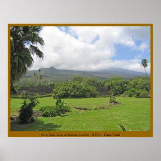 Pi'ilanihale Heiau at the Kahanu Garden - Maui Poster