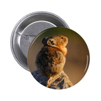 pika 6 cm round badge