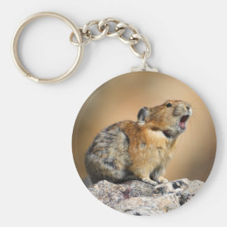 pika basic round button key ring