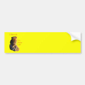 pika bumper sticker