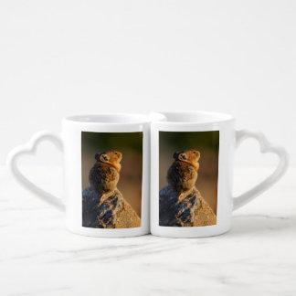 Pika in sunset light lovers mug