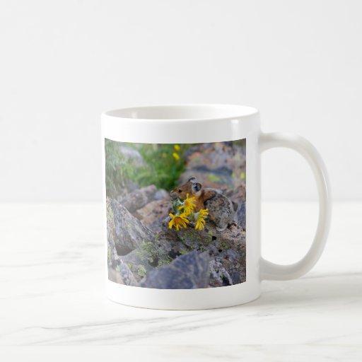 pika mugs