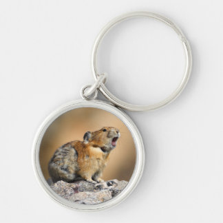 pika Silver-Colored round key ring