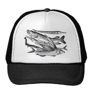 Pike Family - Fish Hat