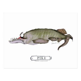 Pike fish, tony fernandes postcard