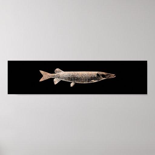 Pike Jack Fish Blush Metallic Pink Rose Black