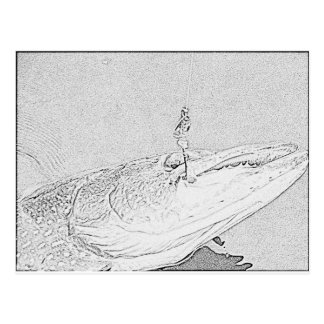 Pike on a lure post card