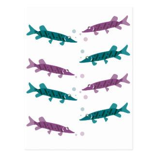 Pike pattern postcards