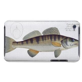 Pike-Perch (Perca lucioperca) plate LI from 'Ichth Case-Mate iPod Touch Case