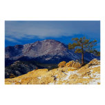 Pikes Peak and Lone Tree Poster