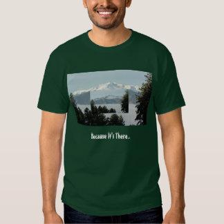 Pikes Peak Because Tees