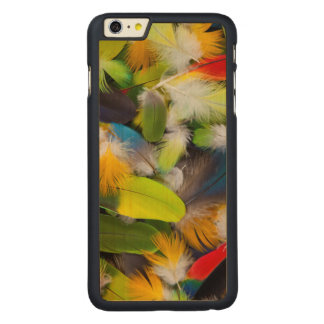 Pile of colorful feathers carved maple iPhone 6 plus case