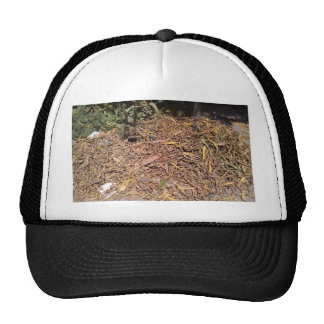 Pile of dried leaves and grass cap