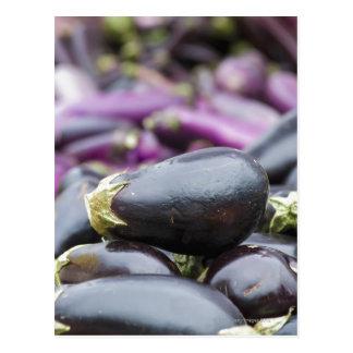 Pile of eggplant postcard