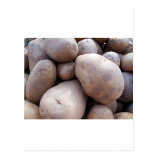 Pile of potatos postcard