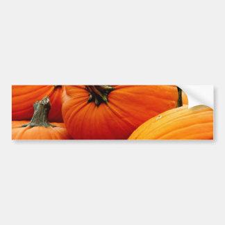 Pile of Pumpkins Bumper Sticker