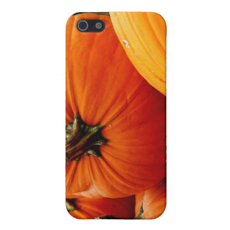 Pile of Pumpkins iPhone 5 Covers