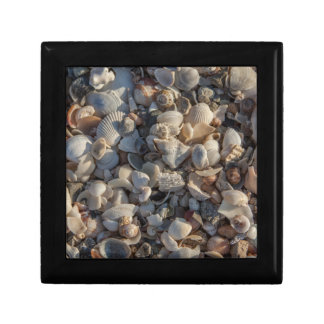 Pile Of Seashells Small Square Gift Box