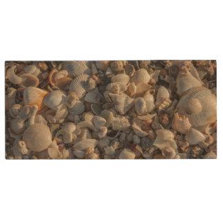 Pile Of Seashells Wood USB Flash Drive