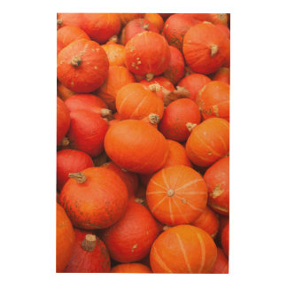 Pile of small pumpkins, Germany Wood Canvases