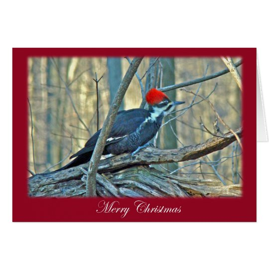 Pileated Woodpecker Merry Christmas Items Card