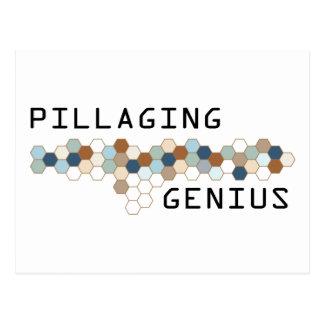 Pillaging Genius Post Cards