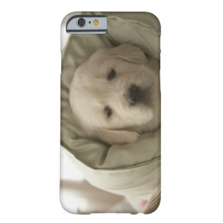 Pillow around dog barely there iPhone 6 case