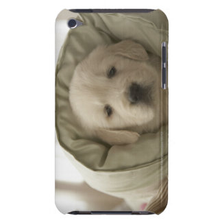Pillow around dog barely there iPod case