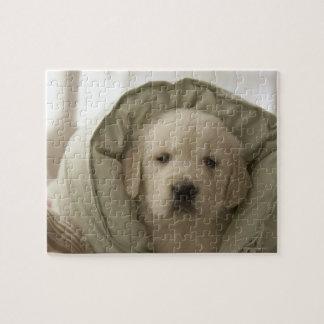 Pillow around dog jigsaw puzzle