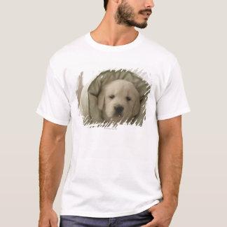 Pillow around dog T-Shirt