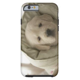 Pillow around dog tough iPhone 6 case