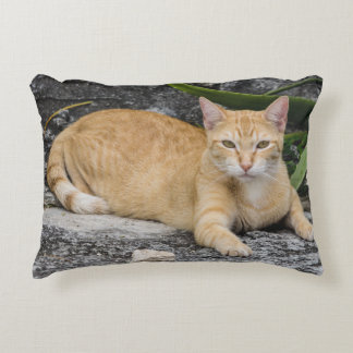 Pillow - Cool Cat in Cancun, Mexico