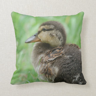 Pillow/cushion Duckling duck chicken Cushion