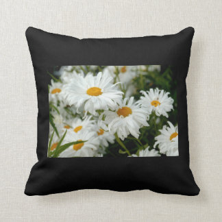 Pillow with Daisies against black background Cushion