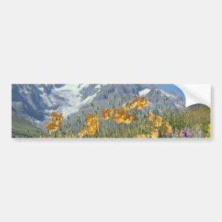 Pin Alps, France flowers Bumper Sticker