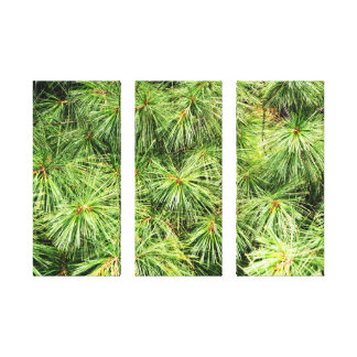 Pine 3 Panel Canvas Decoration Gallery Wrapped Canvas