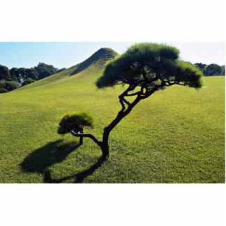 Pine and manmade hillock, Suizenji Park, Kumamoto, Photo Cutouts