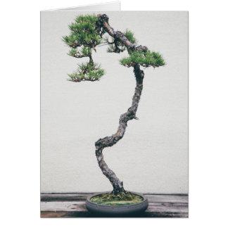 Pine Bonsai Greeting Card