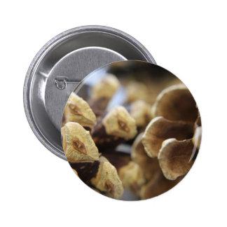 pine cone 6 cm round badge