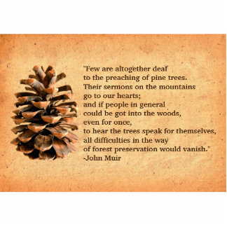 Pine Cone And John Muir Quote Photo Sculpture Magnet