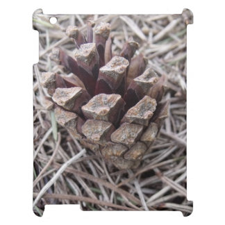 Pine Cone And Pine Needles iPad Covers