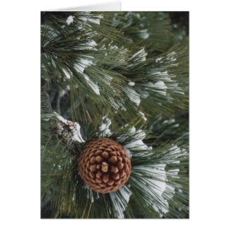 Pine Cone Greeting Card