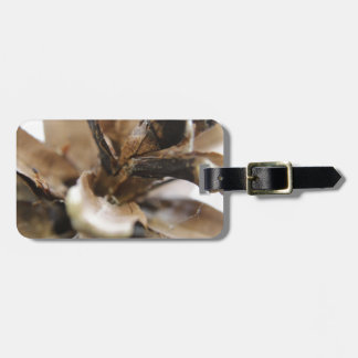 pine cone luggage tag