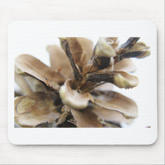 pine cone mouse pad