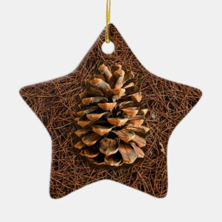 Pine Cone On Fallen Needles Christmas Ornament