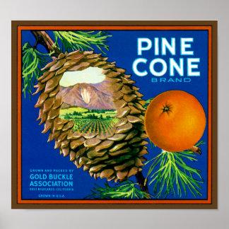 Pine Cone Oranges Print