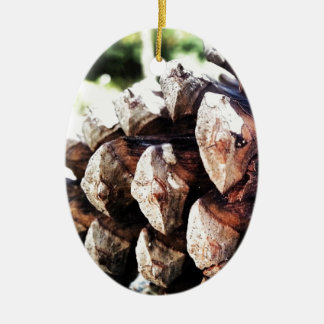 Pine Cone - [Plants] Ceramic Oval Decoration