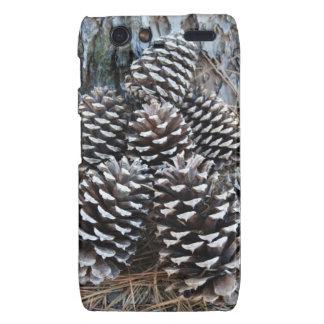 Pine Cones Case-Mate Motorola Droid RAZR Droid RAZR Cover