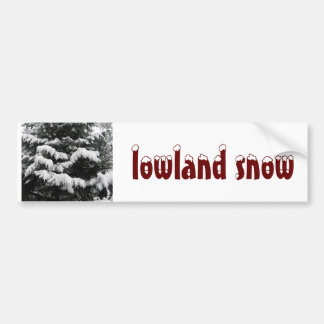 Pine Covered in Lowland Snow Olympia WA Car Bumper Sticker