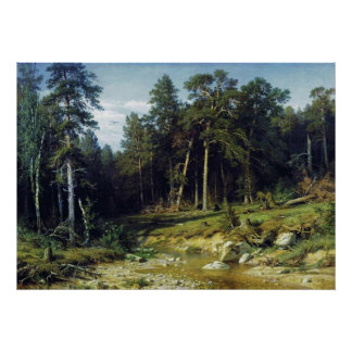 Pine Forest in Viatka Province Poster